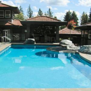 backyard-oasis2